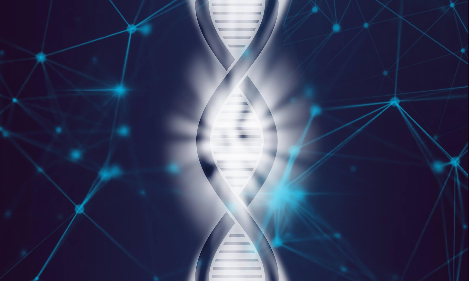 Erfahrungen verändern unsere Gene